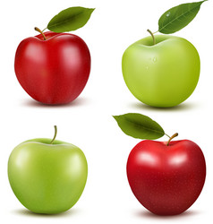 Set of red and green apple fruits with cut vector