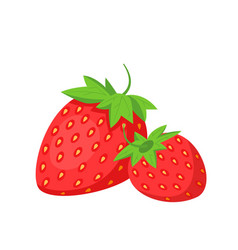 strawberries fruit icon vector image