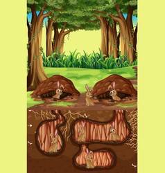 Underground animal hole with many brown rabbits vector