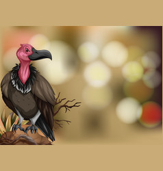 A vulture on blurry background vector