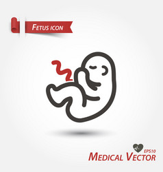 fetus icon medical vector image