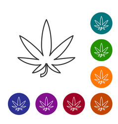 Grey line medical marijuana or cannabis leaf icon vector