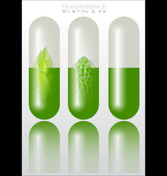 herbal remedies vector image