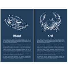 seafood set with mussel and crab engraved sketch vector image