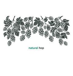 Set hop botany border bio beverage vector