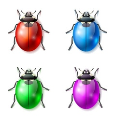 Set of multicolored fictional beetles vector