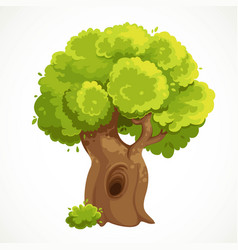 Summer big old tree with a hollow and lush green vector