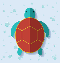 tortoise icon Sea animal cartoon graphic vector image