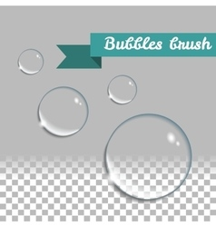 Transparent bubbles brush Isolated design vector