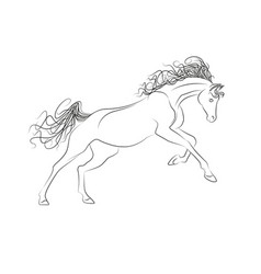 outline drawing horses the horse gallops vector image vector image