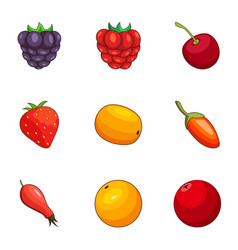 Berry field icons set cartoon style vector