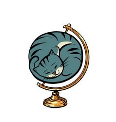 Globe international cat is curled up in a ball vector
