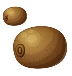 Kiwi fruit cartoon icon isolated on white vector