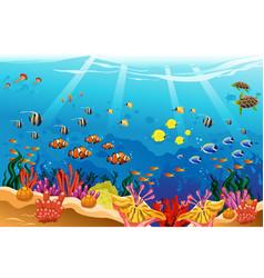 marine underwater scene vector image