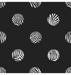 Polka dots background of zebra pattern vector