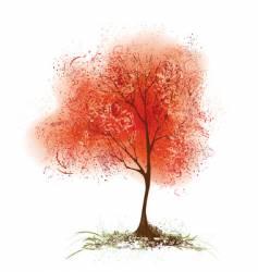 Red aspen vector