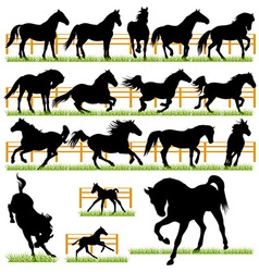 set 17 horses silhouettes vector image