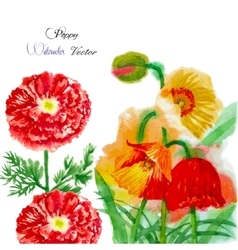 Watercolor background with red poppy-05 vector image