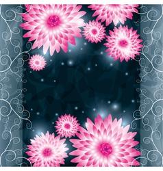 Flower chrysanthemum background Invitation or vector image vector image