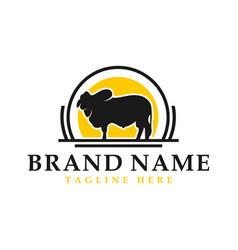 australian cow animal vintage logo vector image
