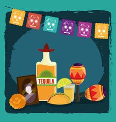 day dead photos frame tequila maracas taco vector image