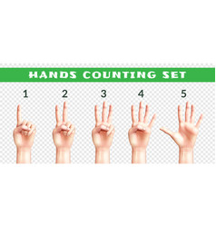 transparent set of counting hands vector image