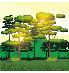 colorful background of sunlight over big trees and vector image vector image