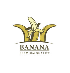 banana fruit emblem vector image