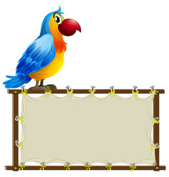 board template with cute macaw on white background vector image