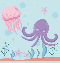 cute octopuses with starfish avatar character vector image