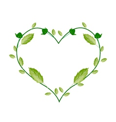 Green Leaves and Flower Buds in Heart Shape vector