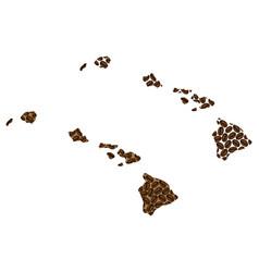 Hawaii - map of coffee bean vector