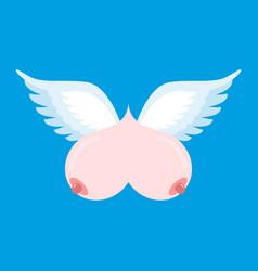 breast flying flying tit sorority logo female vector image vector image