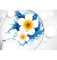 Frangipani Flowers Composition vector image