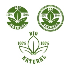 Natural bio green labels set vector image vector image