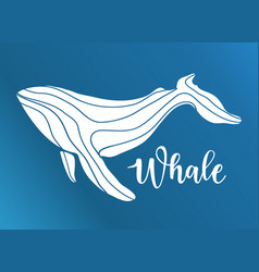 abstract whale logo deign vector image