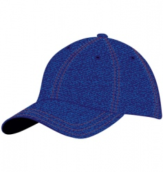 cap blue denim vector image