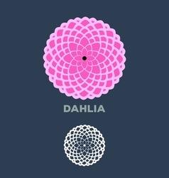 Dahlia vector image