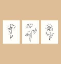design templates botanical vector image