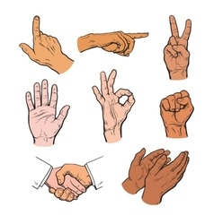 Drawn hands a set of hands and fingers vector