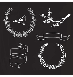 hand drawn spring graphic set on blackboard vector image vector image