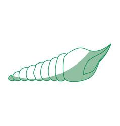 mollusk sea life design vector image