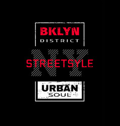 new york city brooklyn t-shirt graphics on a vector image