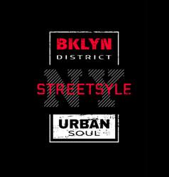 New york city brooklyn t-shirt graphics on a vector