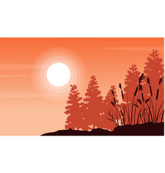 Silhouette of coarse grass and spruce landscape vector