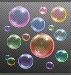 soap bubbles realistic transparent vector image
