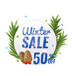 winter sale banner with pine cone and fir branchs vector image