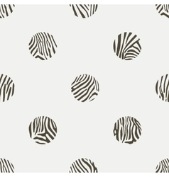 Polka dots background of zebra pattern vector image