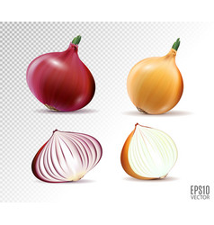 Set of fresh whole and half yellow and red vector