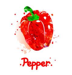 Watercolor pepper vector